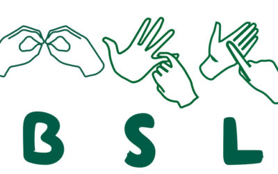 Public Statement From The Working Group on BSL Legislation