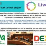 DDYC Meeting: Wellbeing and the Live Well Project